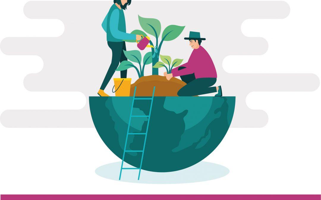 Rigenerare un quartiere partendo dall'agricoltura